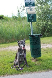 Who takes a picture of their dog next to a poop can?  Me.  When it proves how far we've come.  :)